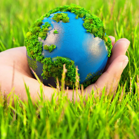 Veganism can solve climate change