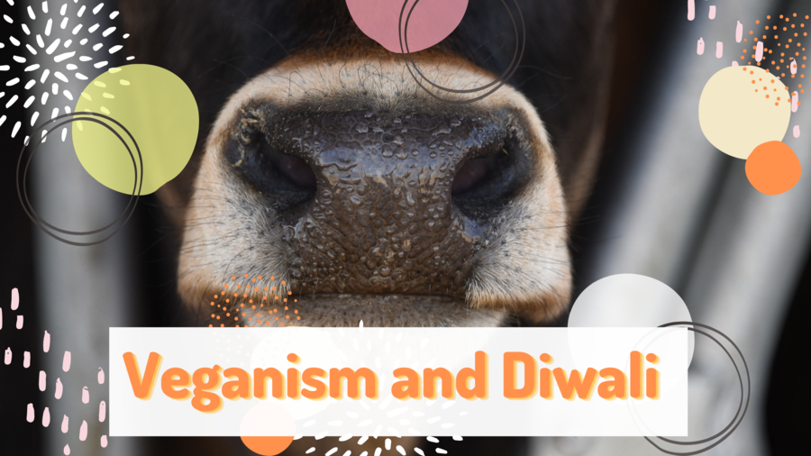 Veganism and Diwali