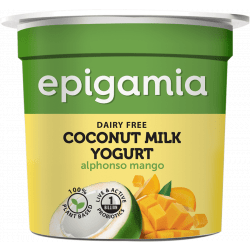 Mango Coconut Milk Yogurt